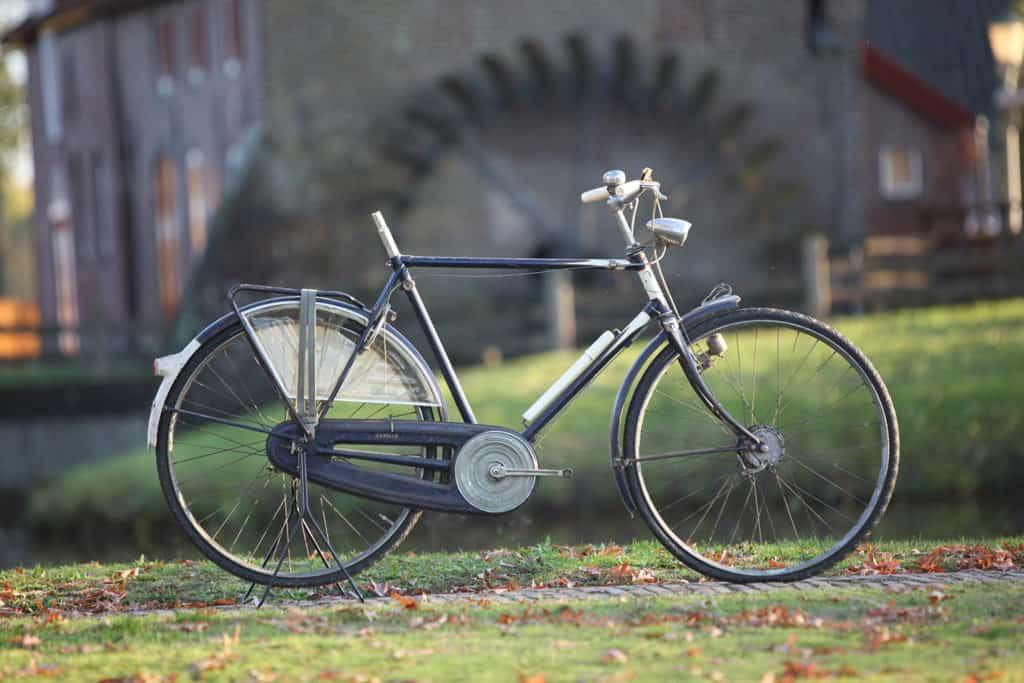 Gazelle Luxe Sport 1964