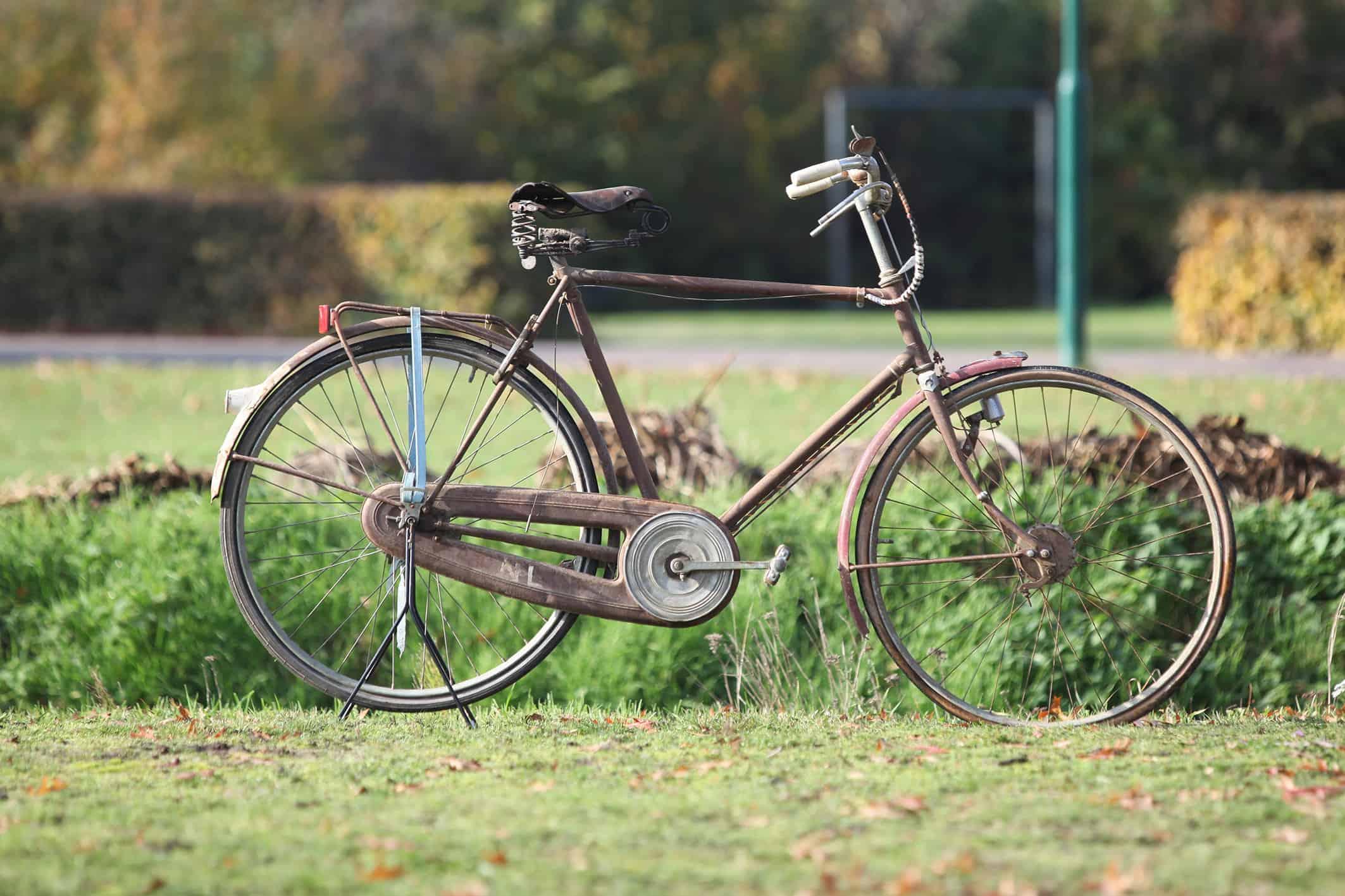 Gazelle 1959