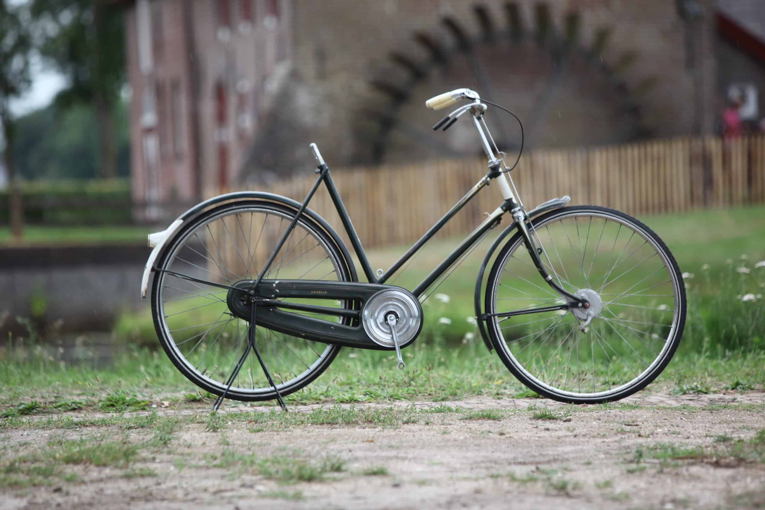 Gazelle Sport Luxe 1955