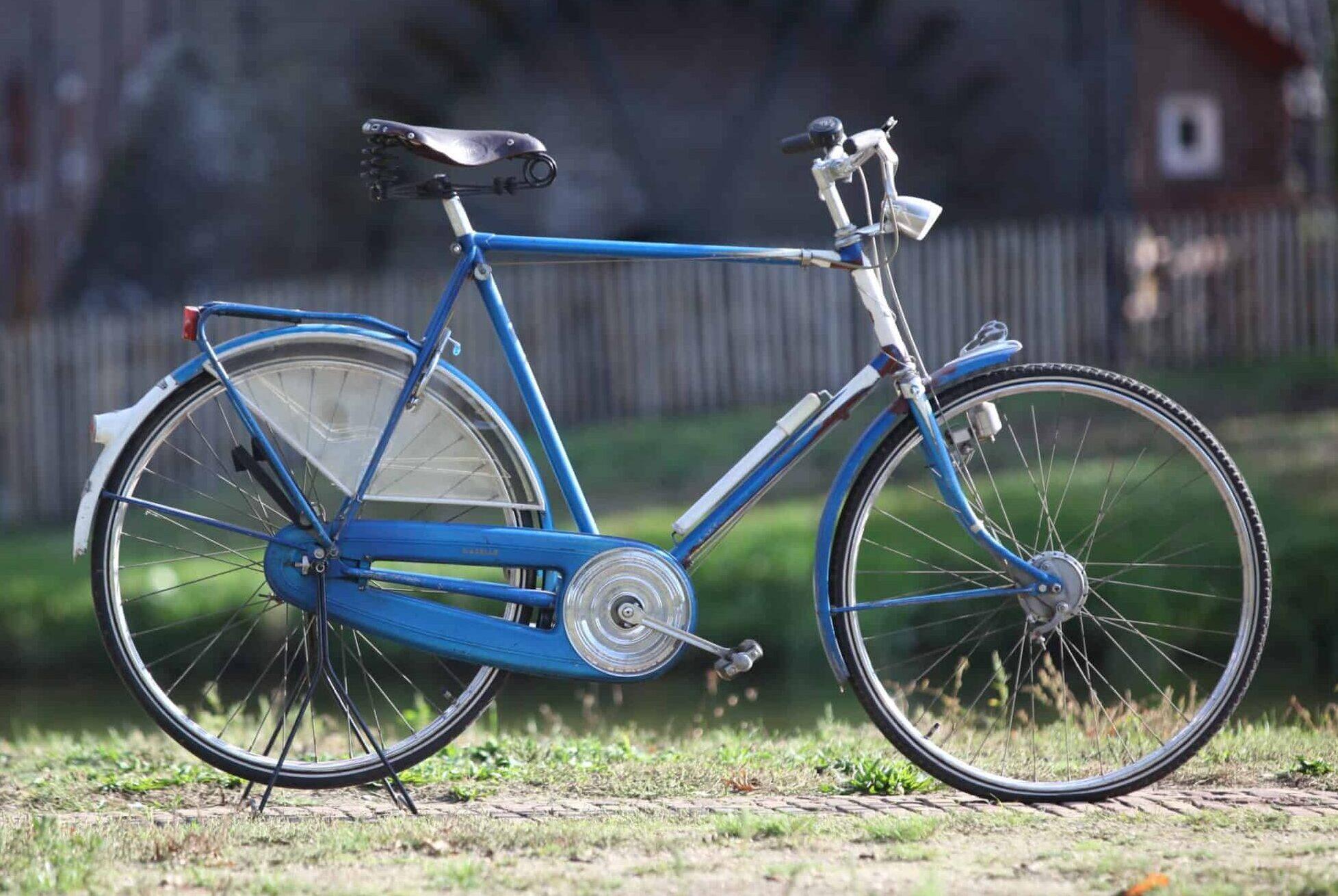 Gazelle Sport Luxe 1960