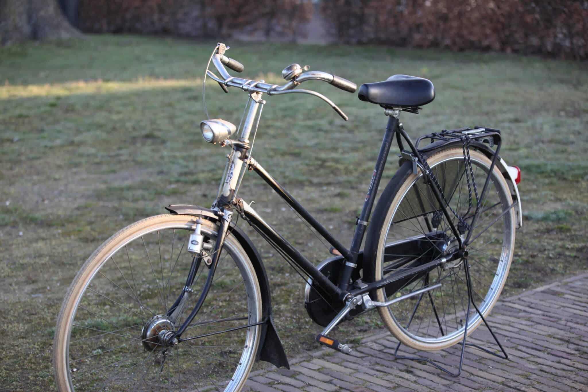 Gazelle 1961